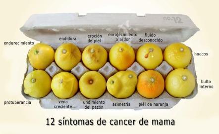 12 Síntomas del Cáncer de mama