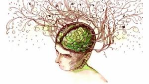 la complejidad de la mente humana