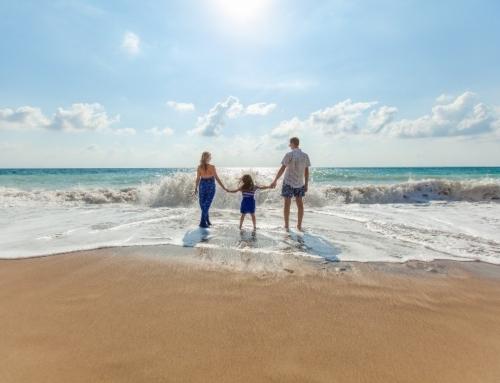 Familia: El sistema es más que la suma de sus partes